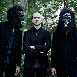 Image for 'Peter Van Huffel's Gorilla Mask'