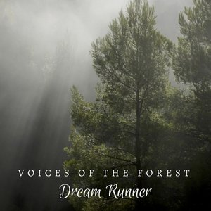 Image for 'Voices of the Forest'