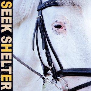 Изображение для 'Seek Shelter'