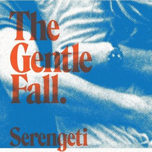 Image for 'the gentle fall'
