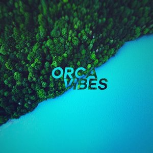Image for 'Orca Vibes'
