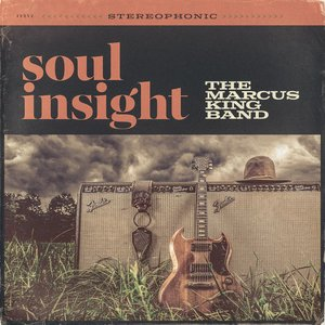 Image for 'Soul Insight'
