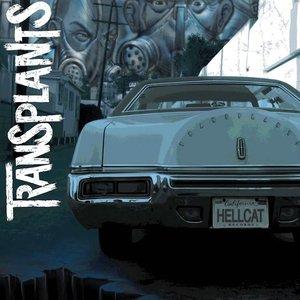 Immagine per 'Transplants'