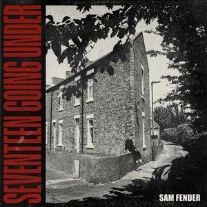 Bild för 'Seventeen Going Under (Deluxe)'