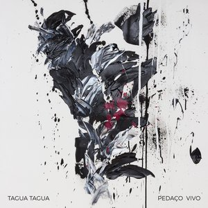 Image for 'Pedaço Vivo'