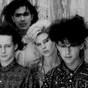 Image for 'Clan of Xymox'
