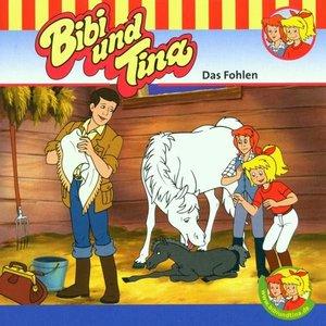 Image for 'Folge 1: Das Fohlen'