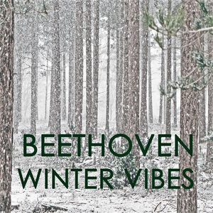 Image for 'Beethoven - Winter Vibes'