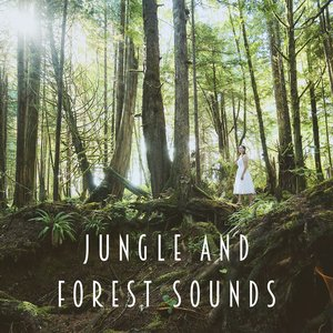 Image for 'Jungle And Forest Sounds'