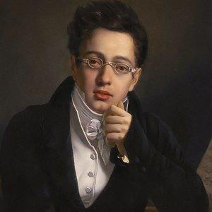 Image pour 'Franz Schubert'