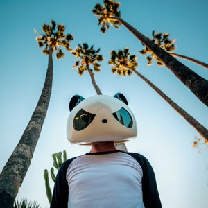 Image for 'The White Panda'