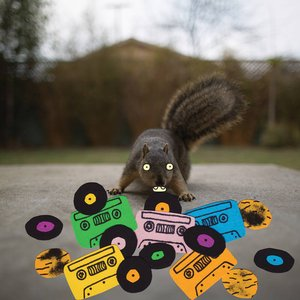 Image for 'Squirrel Tape Instrumentals, Vol. 1'