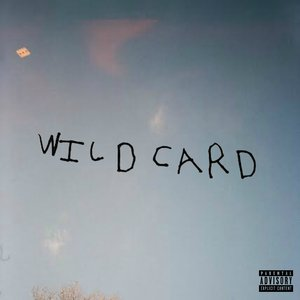 Image for 'Wild Card'