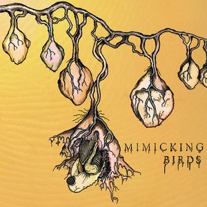 Image for 'Mimicking Birds'