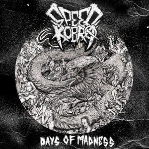 Изображение для 'Days of Madness'