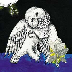 Image for 'The Magnolia Electric Co'