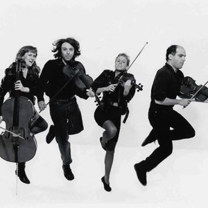 Bild für 'The String Quartet'