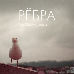 Image for 'Рёбра'