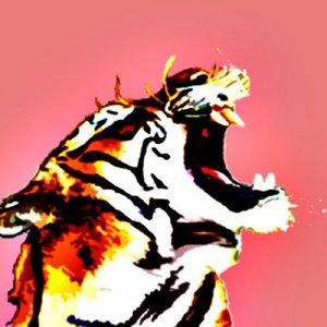 Image for 'El Tigr3'