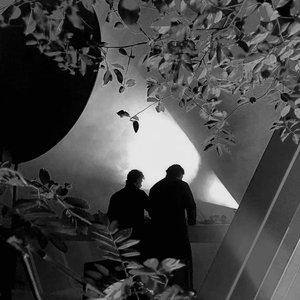 Image for 'Wanderwelle'