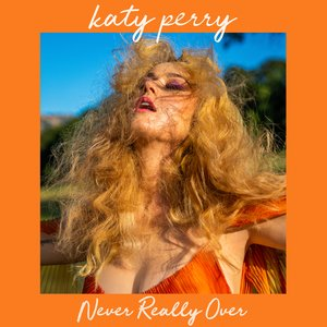 Image for 'Never Really Over'