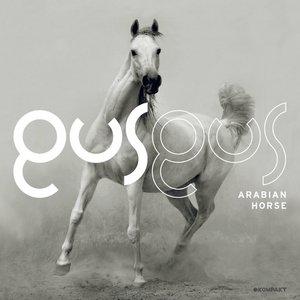 Image for 'Arabian Horse'