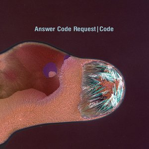 Image for 'Code'