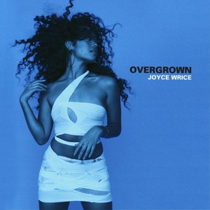 Image for 'Overgrown'