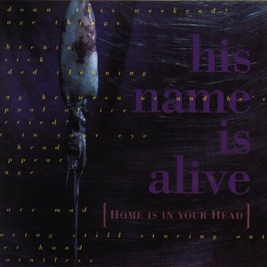 Image for 'Home Is in Your Head'
