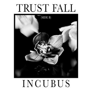 Image for 'Trust Fall (Side B)'