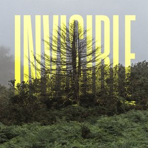 Image for 'The Invisible'