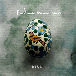 Imagen de 'Bird'