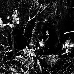 Zdjęcia dla 'Wolves in the Throne Room'