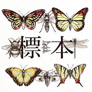 Image pour '標本'
