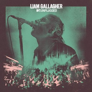 Image pour 'MTV Unplugged (Live At Hull City Hall)'