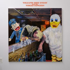 Image for 'VOLCANIC BIRD ENEMY AND THE VOICED CONCERN'
