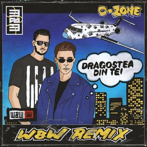 Image for 'Dragostea Din Tei (W&W Remix)'