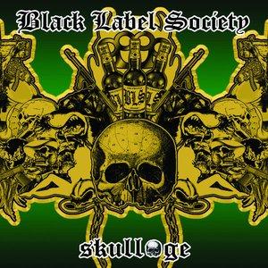 Изображение для 'Skullage'