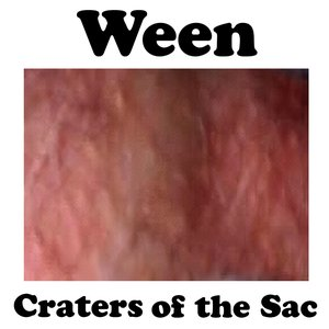 Image for 'Craters of the Sac'