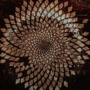 Image pour 'The Collective'