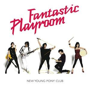 Image for 'Fantastic Playroom'