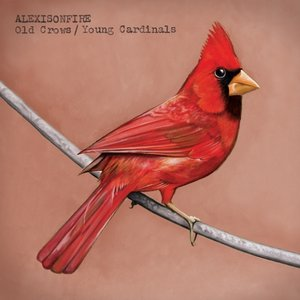 Image for 'Old Crows/Young Cardinals'