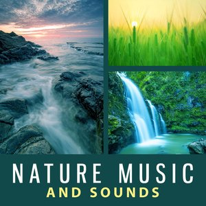 Image for 'Nature Sounds Nature Music'
