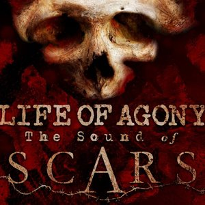Image for 'The Sound of Scars'