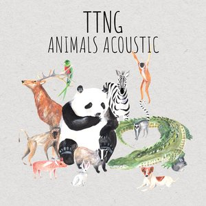 Image for 'Animals Acoustic'