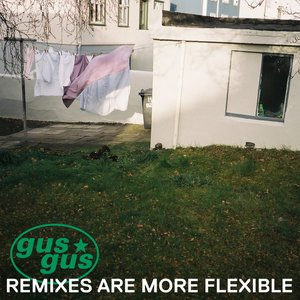 Image for 'REMIXES ARE MORE FLEXIBLE Pt. 2'