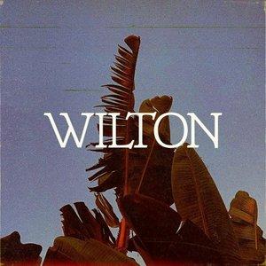 Image for 'Wilton'