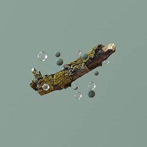 Image for 'In 4k'