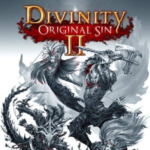 Image for 'Divinity: Original Sin 2'