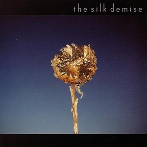 Image for 'the silk demise'